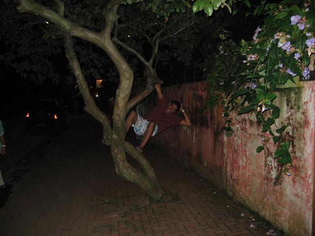 Typical Brasilian behavior